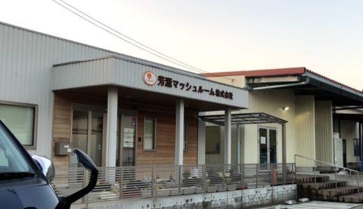 サラメシの千葉県香取市のマッシュルーム栽培農場は芳源マッシュルーム!?場所や評判は!?